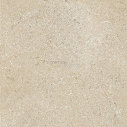 Напольная плитка EGWSS10 SECRET STONE PRECIOUS BEIGE NAT. RET. 14mm 60x60